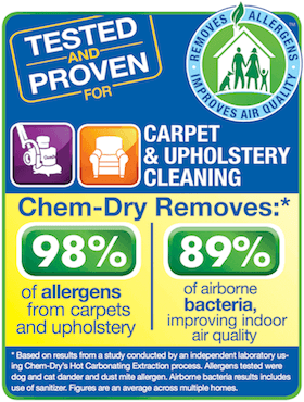 healty carpet cleaning