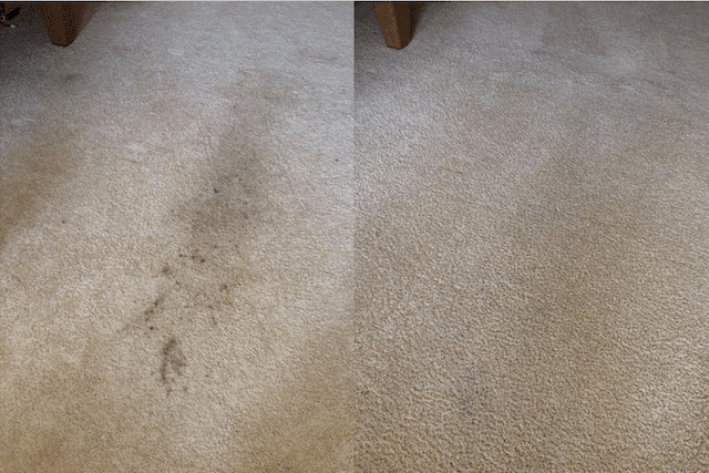 before after carpet cleaning 01