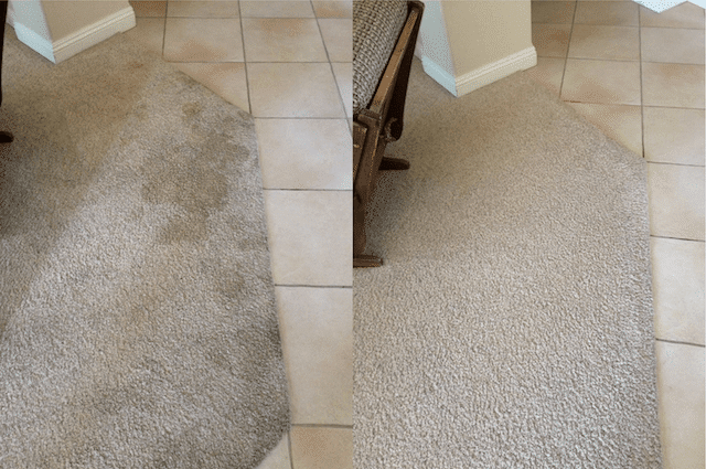 before after carpet cleaning 06